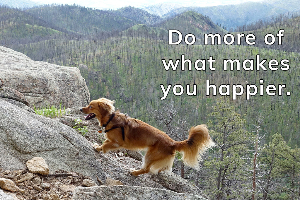 Do more of what makes you happier... with Whiskey Dog running up Grey Rock Mountain in Colorado - Happier Place.
