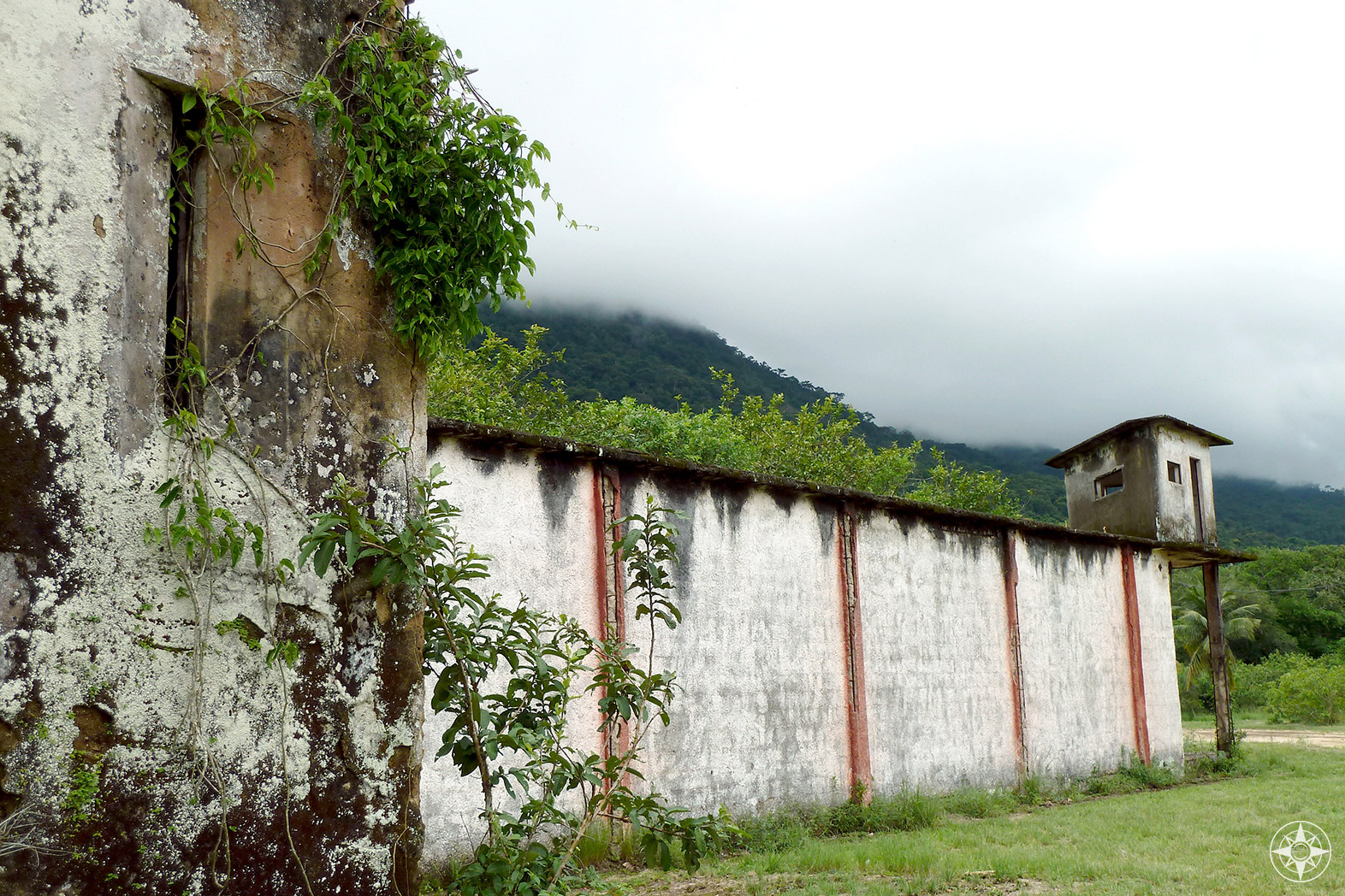Nature take back over an abandoned prison building in Dois Rios on Ilha Grande.