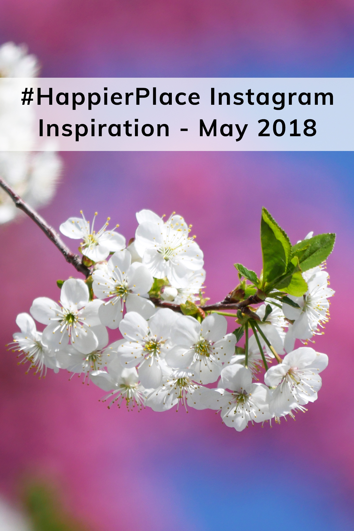 #HappierPlace Instagram Inspiration – May 2018