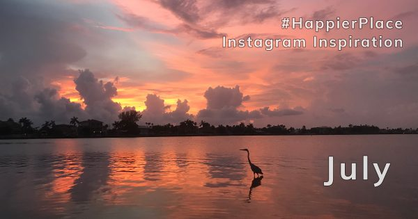 Heron at sunset and other #HappierPlace Instagram Inspiration from July 2018