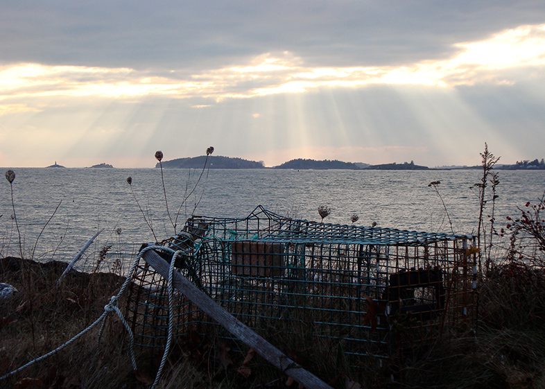 Lobster trap on Bailey Island in Maine.