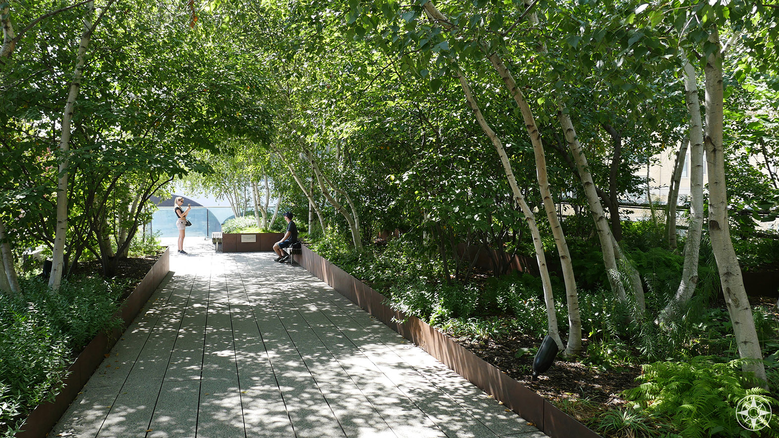 Gansevoort Woodland at the south end of The High Line in NYC.