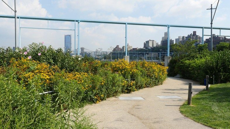 Walk among vibrant flowers and gaze back at the Brooklyn skyline from Pier 6.