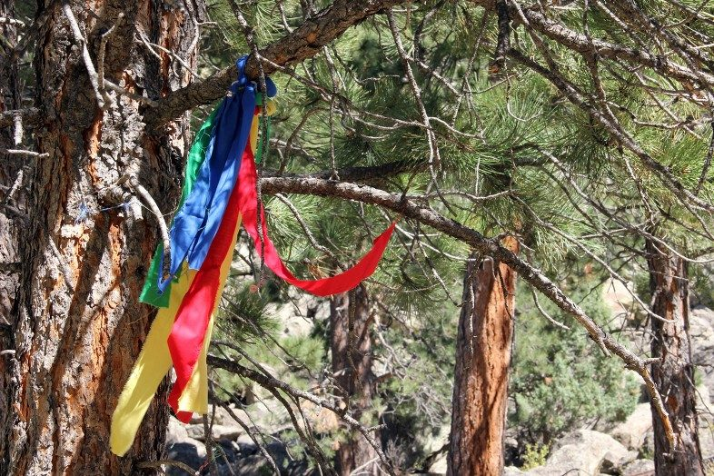 Colorful prayer cloths at Bear Lodge Butte (aka Devils Tower National Monument).