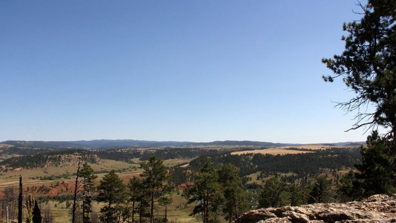 Looking south across Wyoming from the base of the Devils Tower rock formation.
