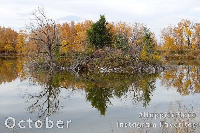 October #HappierPlace Instagram Favorites with island reflected in pond