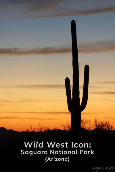 Saguaro cactus at sunset in Saguaro National Park Arizona - Happier Place