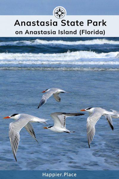 Anastasia State Park on Anastasia Island in Florida.