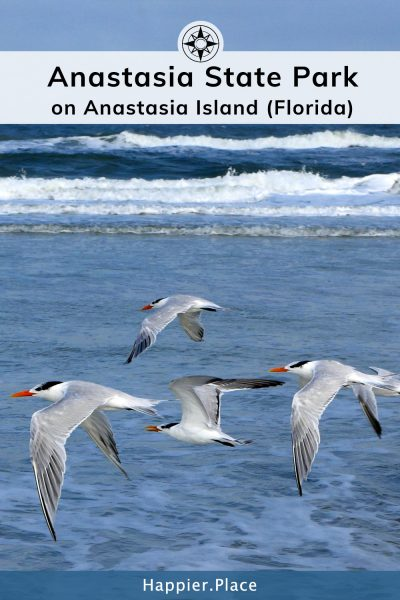 Anastasia State Park on Anastasia Island in Florida.