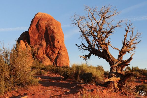 Golden Hour light is even more intense among the reddish rocks and sand.