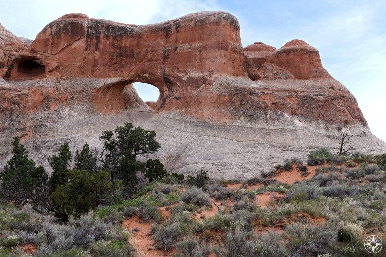 Deer in front of Tunnel Arch in Arches National Park.