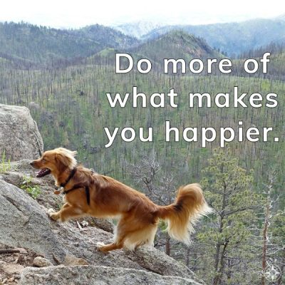 Do more of what makes you happier. Hiking dog