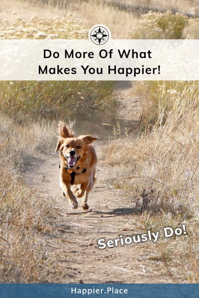 Do more of what makes you happier - happy running dog