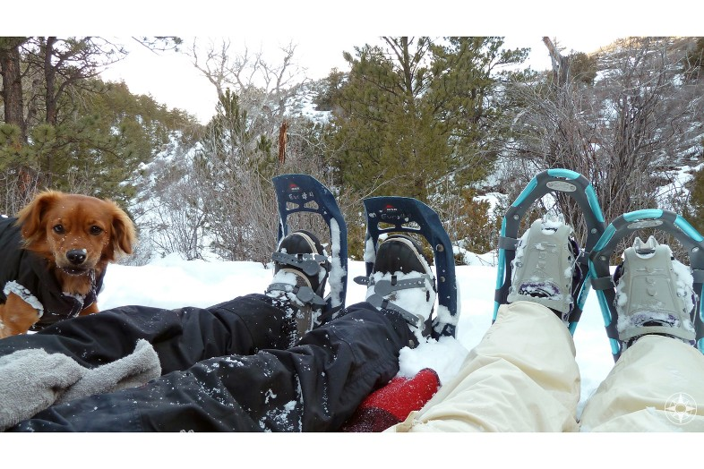 Snow picnic while snowshoeing with dog in Colorado - Happier Place