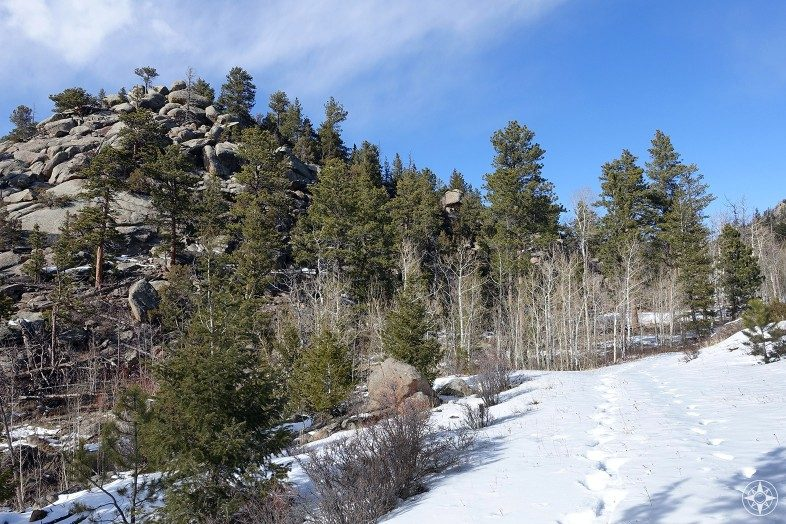 Snowshoe tracks on the Lady Moon Trail in the Rocky Mountains, Colorado.
