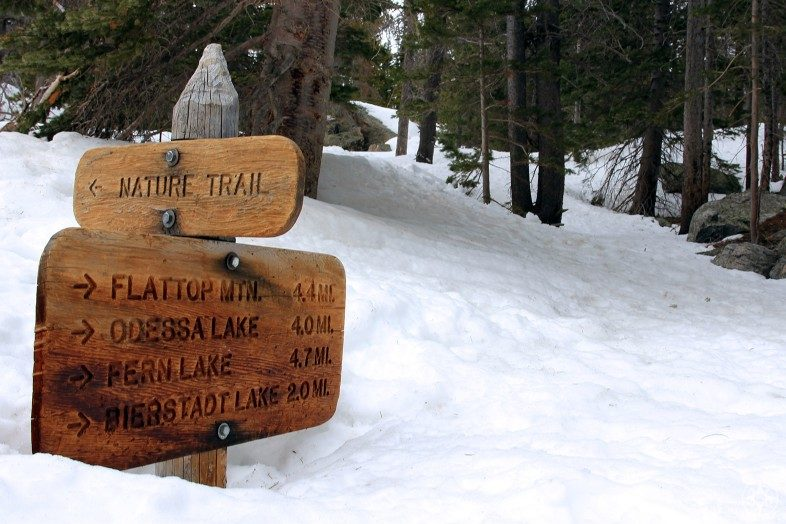 Rocky Mountain National Park trails are covered in so much snow, the trail signs barely poke out. Perfect for snowshoeing in Colorado!