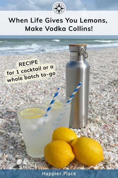 lemons vodka collins bottle on the beach recipe when life gives you lemons