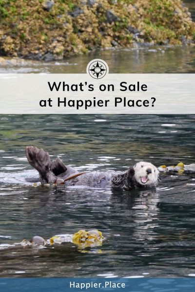 sea otter waving - What's on sale at happier place