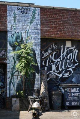 Sokar Uno street art woman plant Could be better Never Satisfied Brooklny