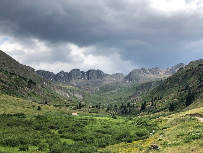 Great American Basin and its wildflowers in Colorado. Photo by Jake Gray.