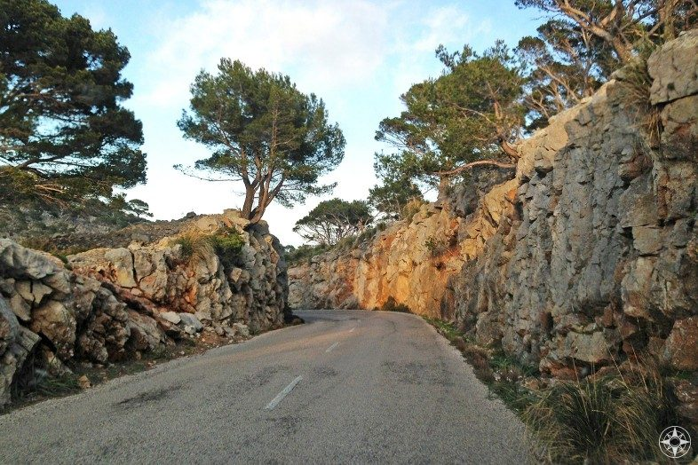 Road lined with rustic walls on Mallorca