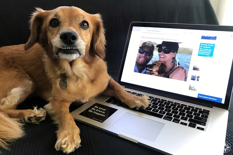 Whiskey Dog answering live chat on laptop for Happier Place website