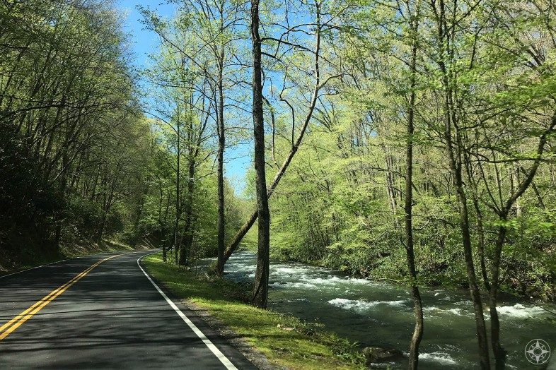 Spring in Smoky Mountains: Newfound Gap Road next to rushing stream