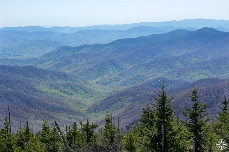 The view south from Clingmans Dome over the smoky peaks with their signature haze and spring green creeping up the hillsides.
