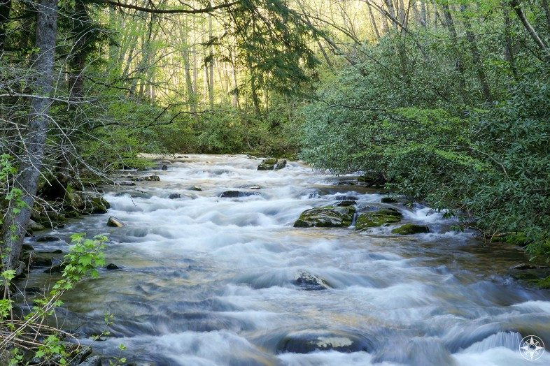 Cascading stream in the Great Smoky Mountain National Park.
