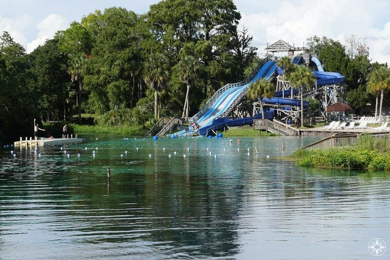Slide right into the natural pool at Weeki Wachee Springs State Park