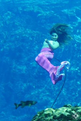 Live mermaids and real fish mingle in this unique Florida attraction