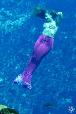 There are mermaids in the Weeki Wachee State Park, but not in the Weeki Wachee River.