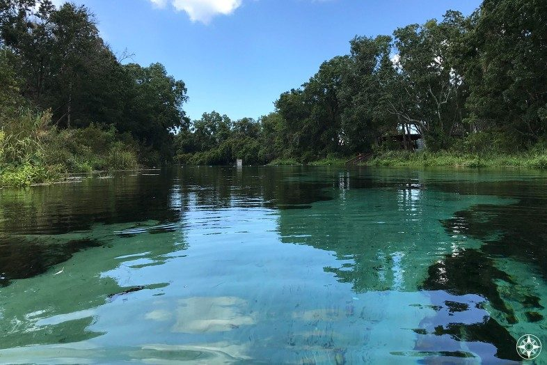Florida hardly gets more refreshing than this: A swimmer's perspective of the crystal clear water and lush natural surroundings in Weeki Wachee Springs State Park.