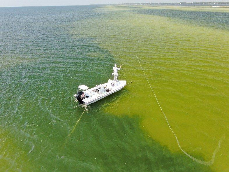 fly fishing, skinny water, long cast, drone shot