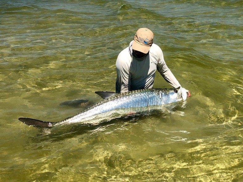 man holding tarpon, skinny water, fly fishing