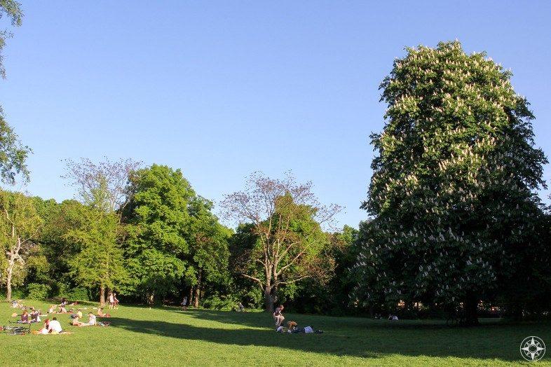 Lawn Liegewiese in Volkspark Friedrichshain Berlin Germany