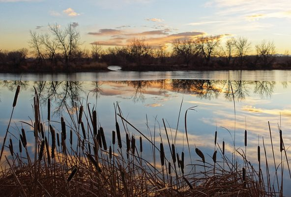 Winter sky reflected in calm pond