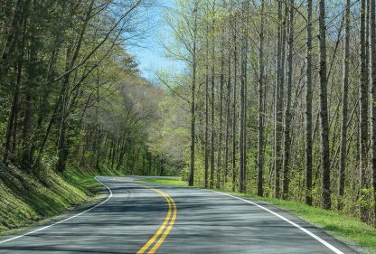 Road, North Carolina, Smoky Mountains National Park, spring, postcard