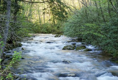Rushing waters in Smoky Mountains National Park, North Carolina, Oconaluftee river postcards
