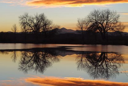 Rocky Mountains, Longs Peak, bare trees, pond reflection, Ft. Collins, postcard, winter