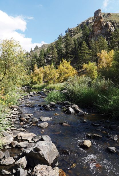 Gateway North Fork River Colorado