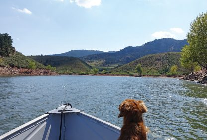 dog, boat, lake, hills, postcard, multiple choice, Whiskey Dog, Horsetooth Reservoir, Colorado