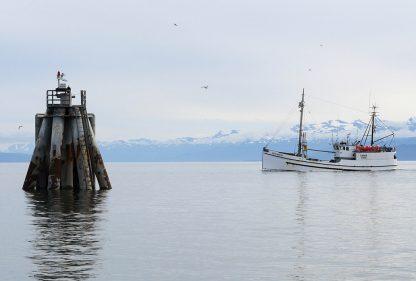 Boat approaching harbor, Homer, Alaska