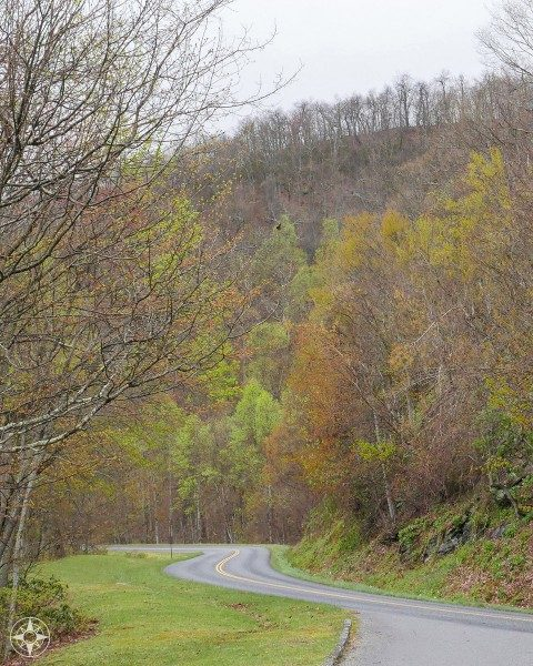 Colorful foliage, trees, curvy mountain road, grey sky, Blue Ridge Parkway