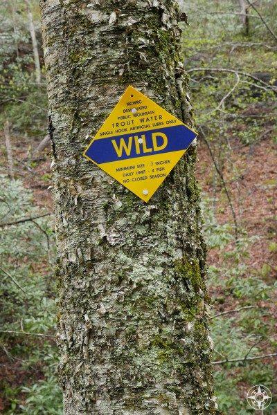 Wild trout water, Bent Creek, Lake Powhatan, North Carolina, public mountain, Blue Ridge Parkway, sign
