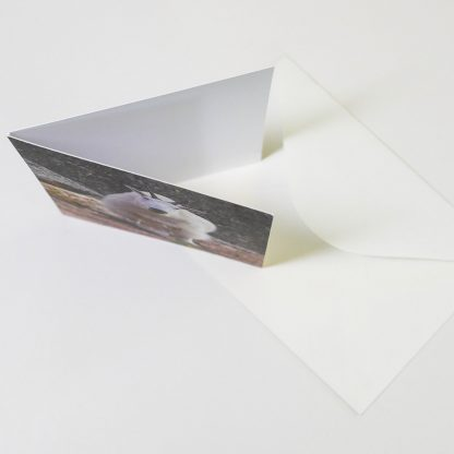 Folding Greeting Card, envelope, Happier Place, top view