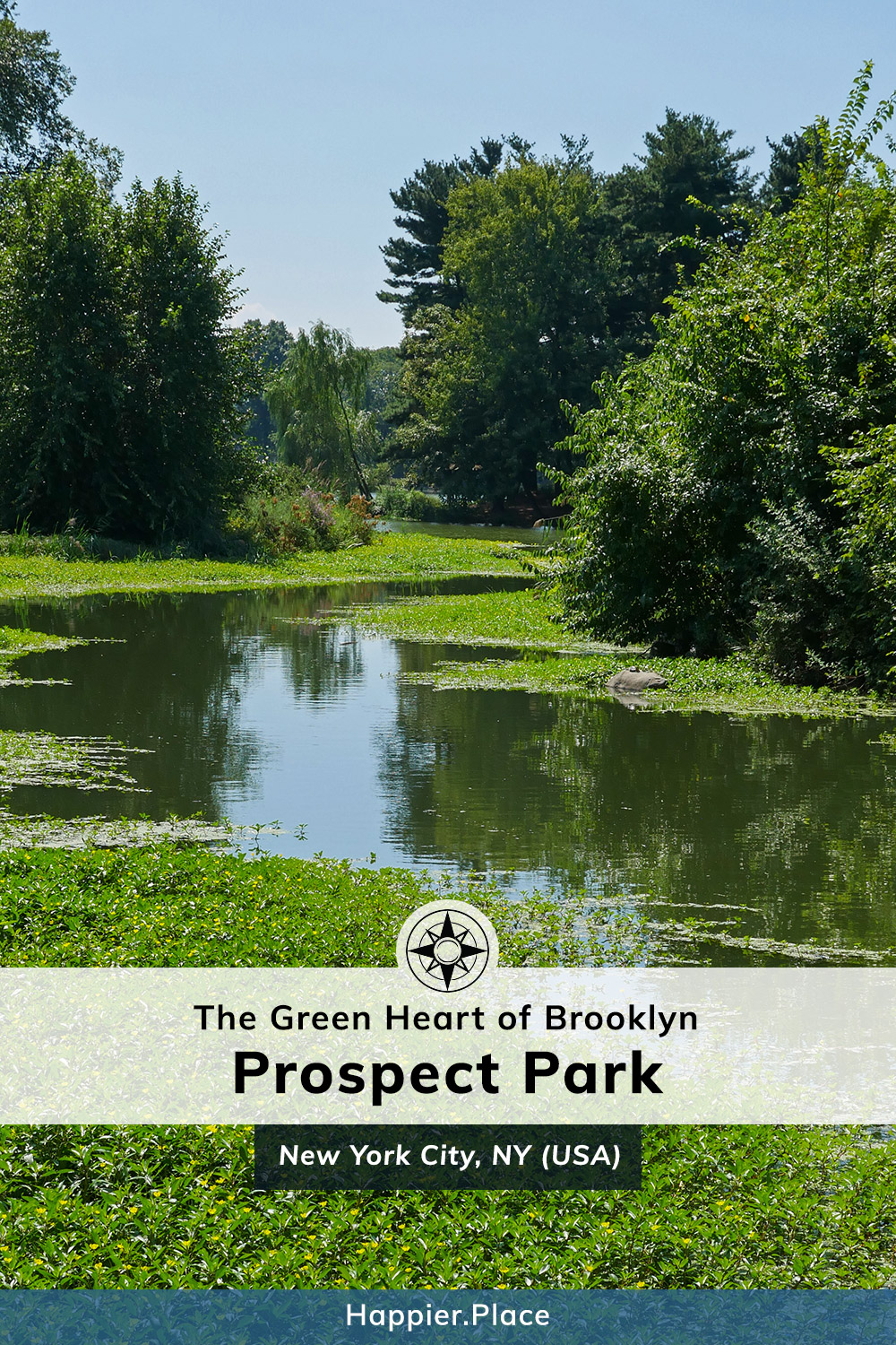 The Green Heart of Brooklyn: Prospect Park - along the Lullwater