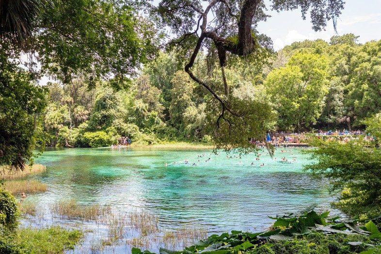 Rainbow Springs State Park, Florida, The Walking Mermaid