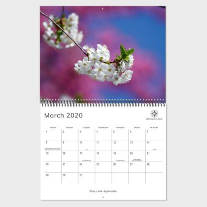 Happier Place 2020 nature photography wall calendar, March, spring blossom, holidays