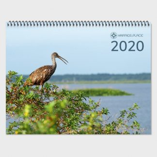 2020 nature photography calendar, happier place, wall calendar, limpkin, bird, Florida